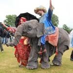 Zarco Polo & z'n olifant Ganesha